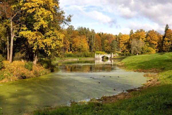 Viaggio in Russia, parco di Pavlovsk